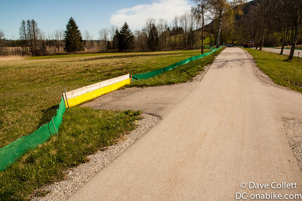 Frog fences (seriously)