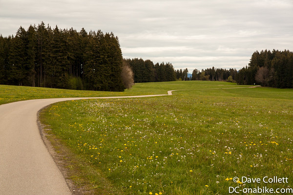 Cycle path through forest and meadows